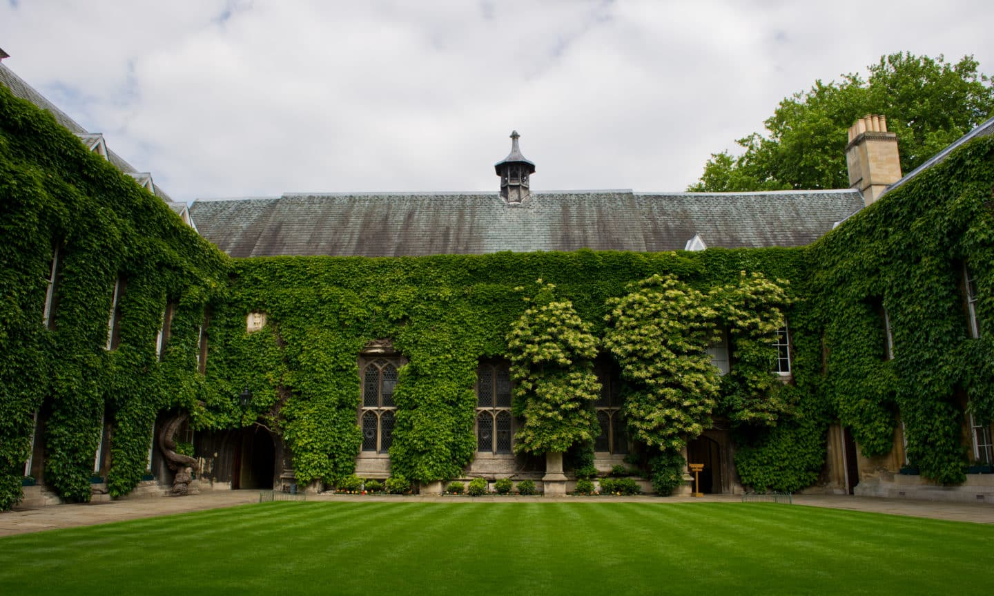 Front Quad in the summer